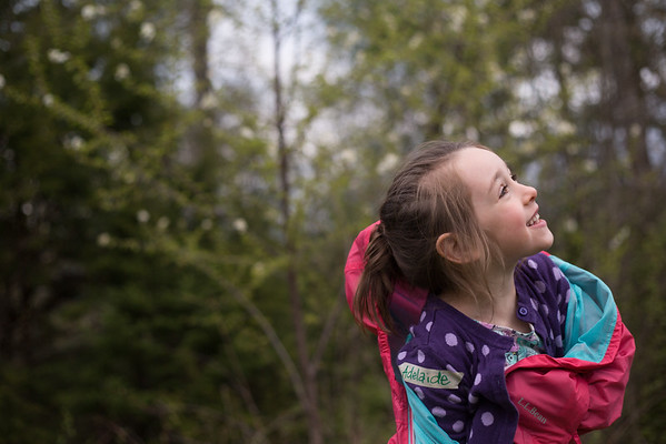 Maine Family Photographer - Week 21/52 #the52project
