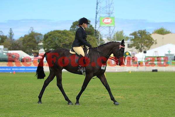 2014 09 26 Perth Royal Show Novice Hack