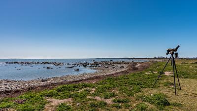 Gotland 2018