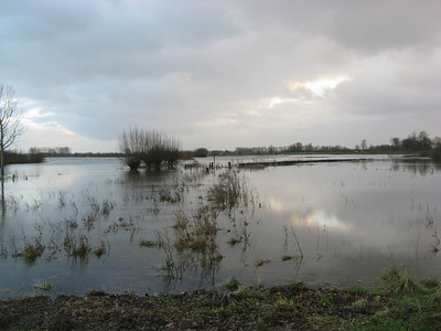 High Water on the IJssel