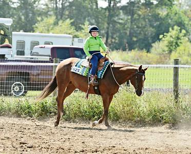 Events 14, 15 & 16  -  Ranch Riding