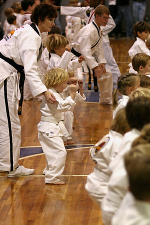 Tae Kwon Do - Will 11_08