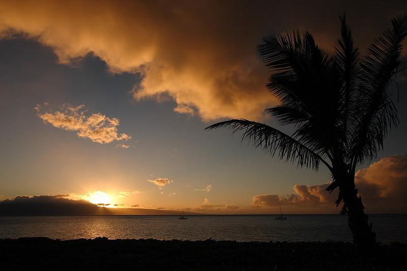 Maui 07 005.JPG