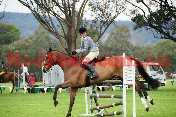 2014 08 17 Serpentine Hack and Dressage Day Working Hunter and OTT Jumping