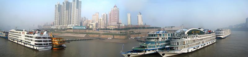 Chongqing, Pandas