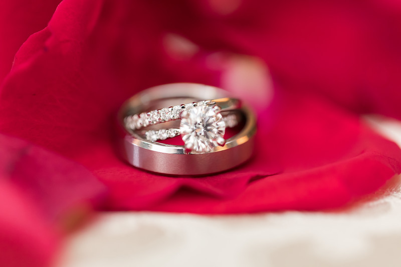 Houston Wedding Photography ~ Norma and Abe-1412.jpg