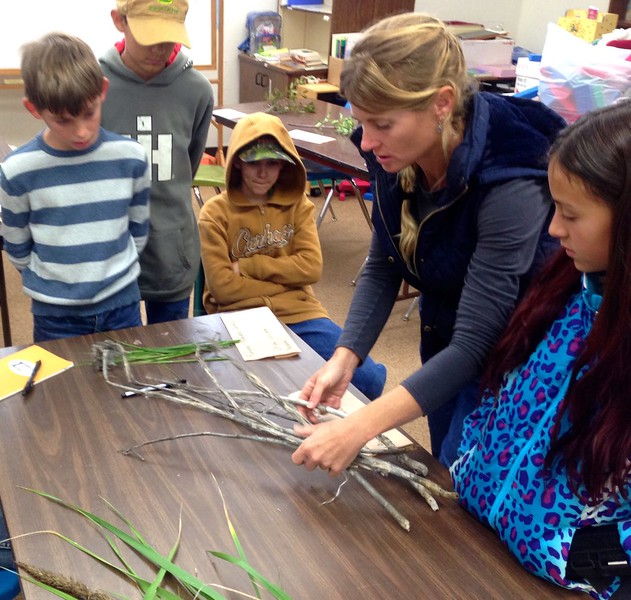 Native Plants and Peoples