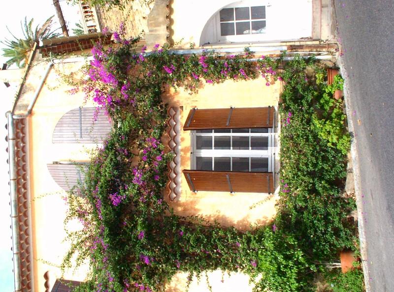 flower ringed door.jpg