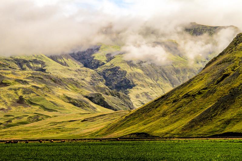 Iceland (96 of 149).jpg