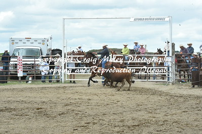 TEAM ROPING PREF 6-26-2016