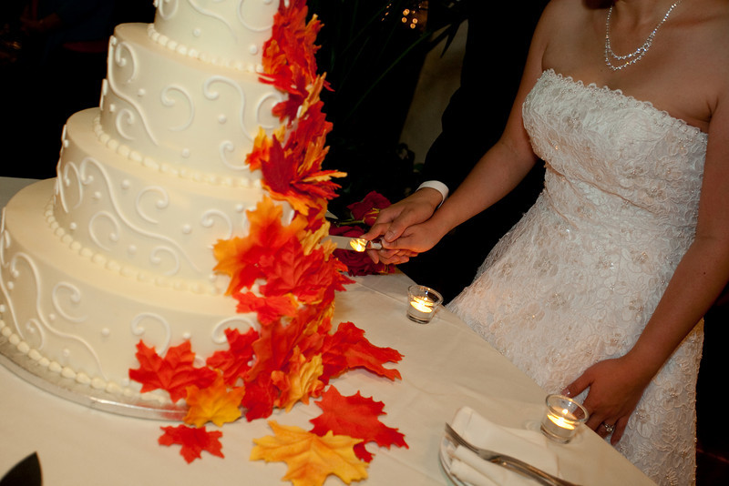 Emmalynne_Kaushik_Wedding-1204.jpg
