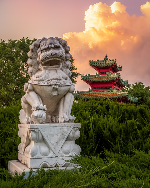 Robert D Ray Asian Gardens