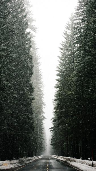 Snowy-Hwy-2.jpg