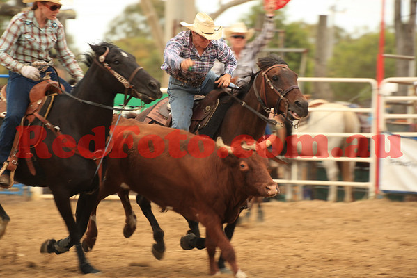 2012 12 31 New Years Rodeo Stampede Arena Steer Undecorating
