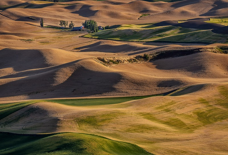 118.Sharp Todd.1.Palouse and Red Barn.jpg