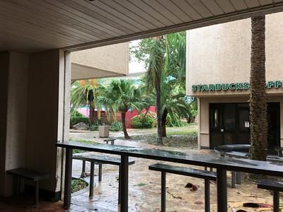 Contributed Harvey Campus Damage