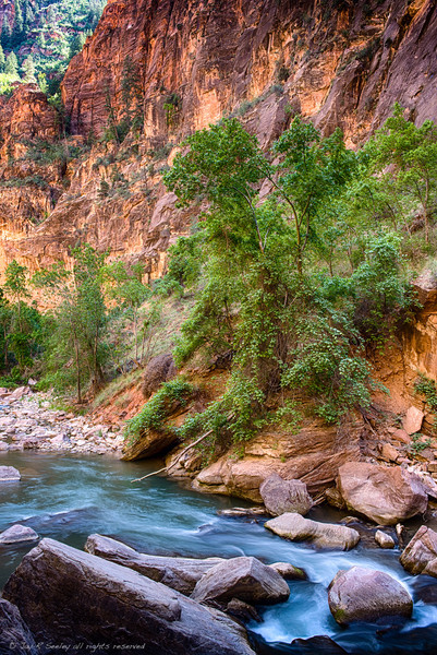 Virgin river flows thru the Zion narrows