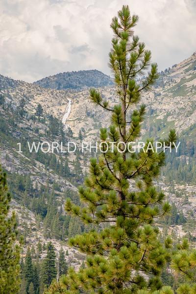 San Fran_Lake Tahoe Trip 2017-1520-87.jpg