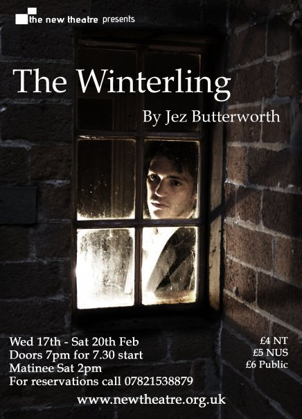 The Winterling poster