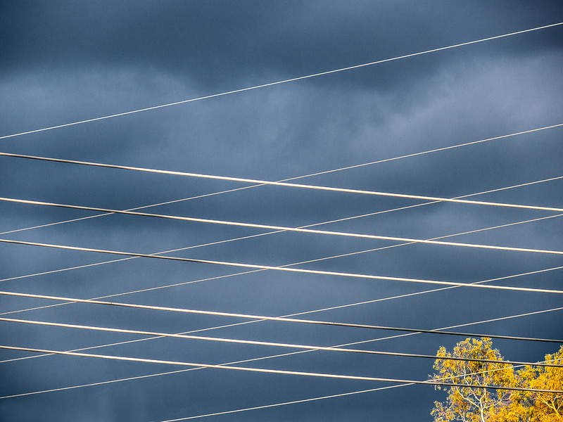 Wires, Santa Clara County, California, 2007