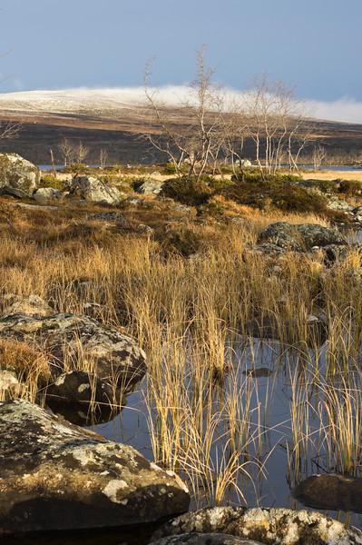 Tsahkaljärvi