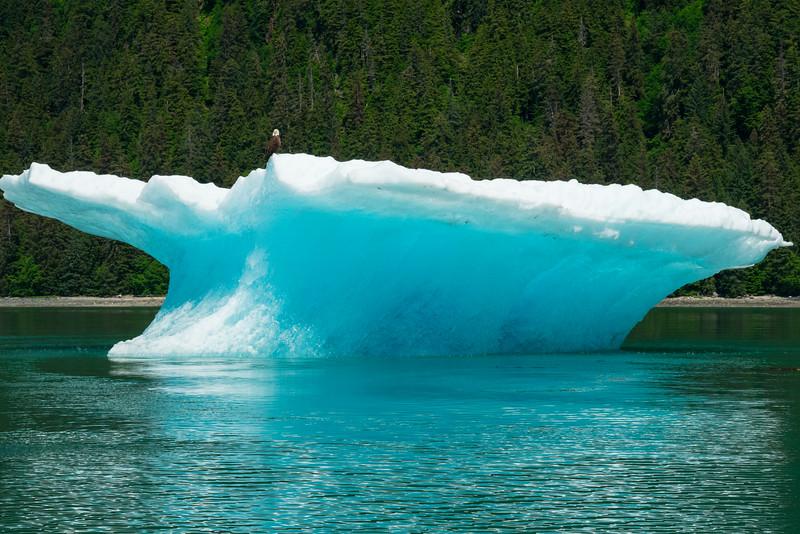 Petersberg Alaska 2019-68.jpg