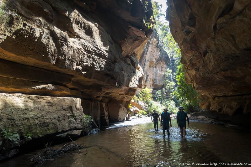 Wollangambe Canyon