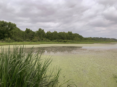 NED Lake, Van Buren, Arkansas