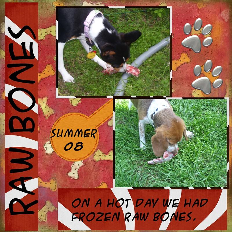 Raw-Bones-08-000-Page-1.jpg