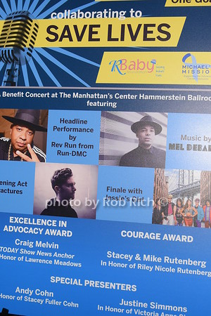 Collaborating to Save Lives to benefit RBaby & Michael's Mission at the Hammerstein Ballroom on 4-4-19.