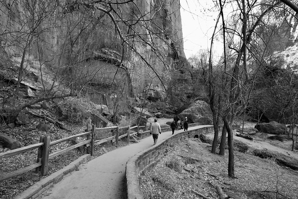 Road trip to Zion National Park in Utah (Album 2)