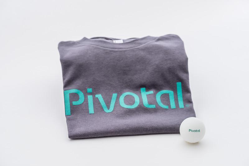 Pivotal  Labs-2.jpg