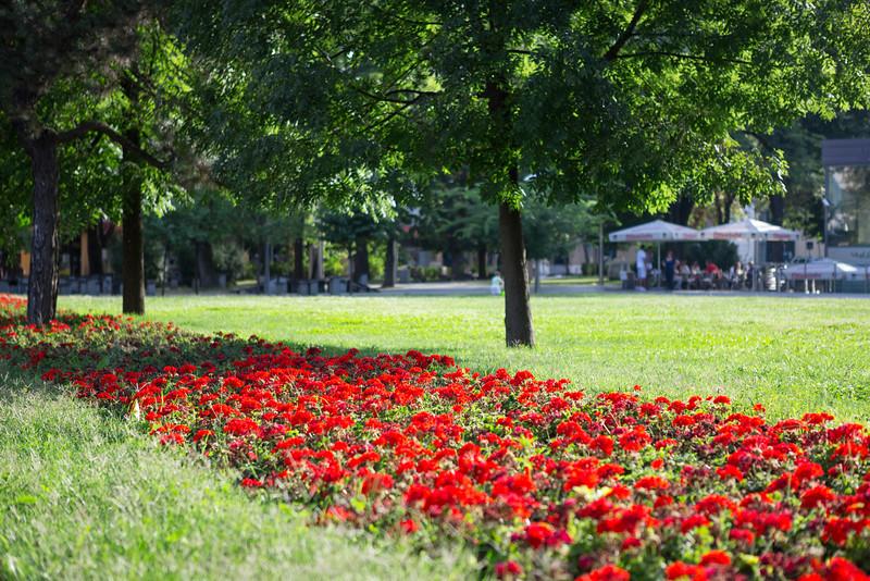 Flower bed in Banja Luka, Bosnia.