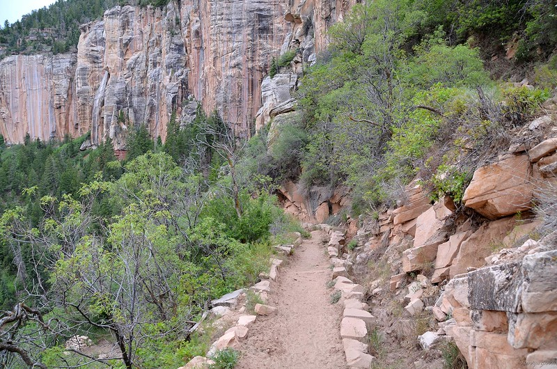 grand_canyon2_2014_011.jpg