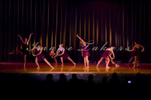 2012-2013 Variety Show