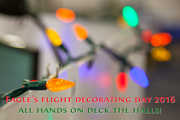 Eagle's Flight Decorating Day 2016