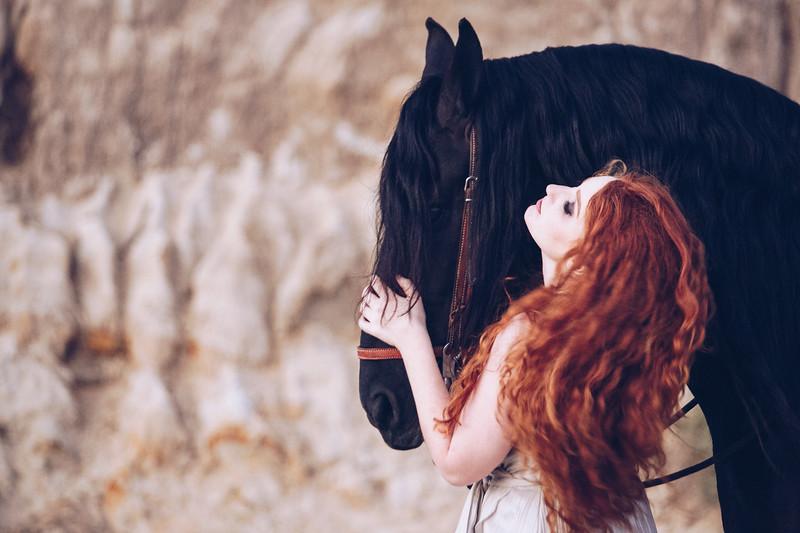 black-horse-2.jpg