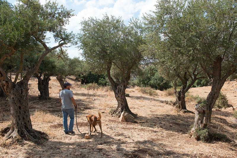 Israel-7210.jpg