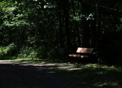 06-04-2021-trail