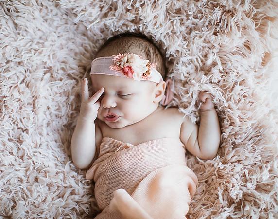 Isabella {newborn}