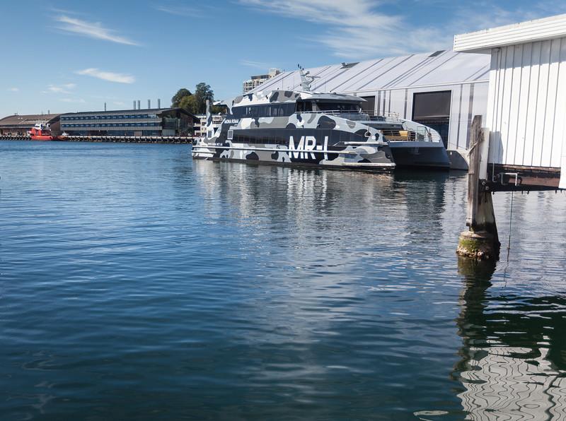 Tasmania_2015_010.jpg