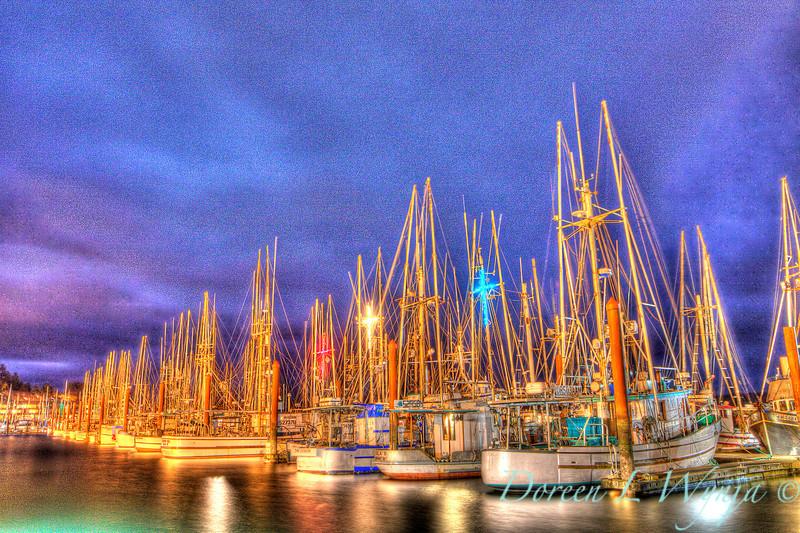 Fishing boats_9636.jpg