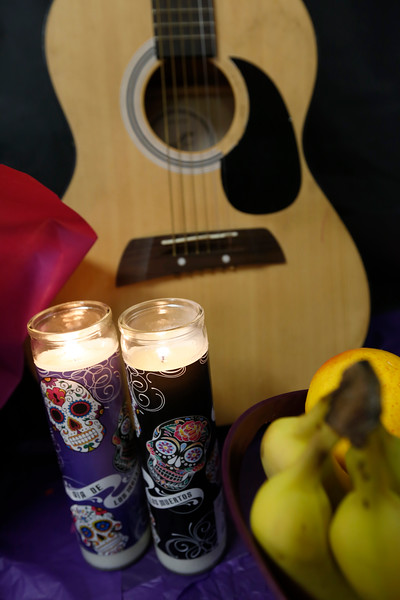 110118BrownMS-DayOfTheDead126 copy.JPG