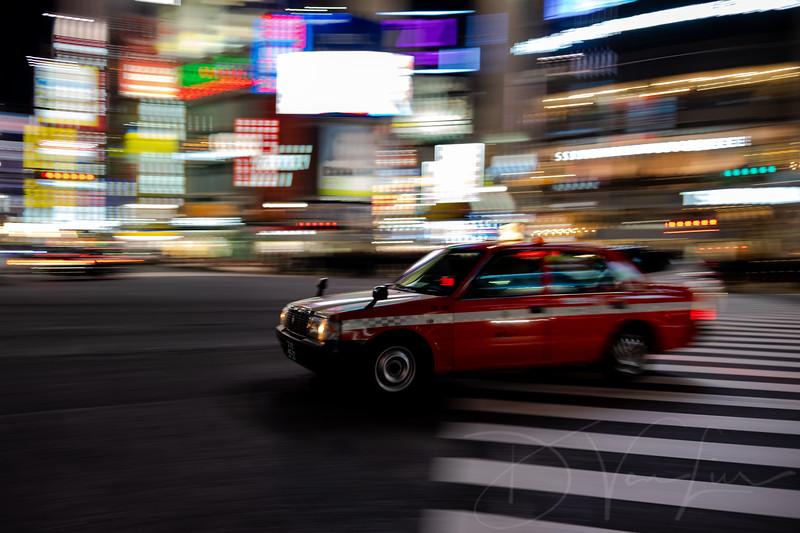 JapanPhotoTour20190205-13.jpg