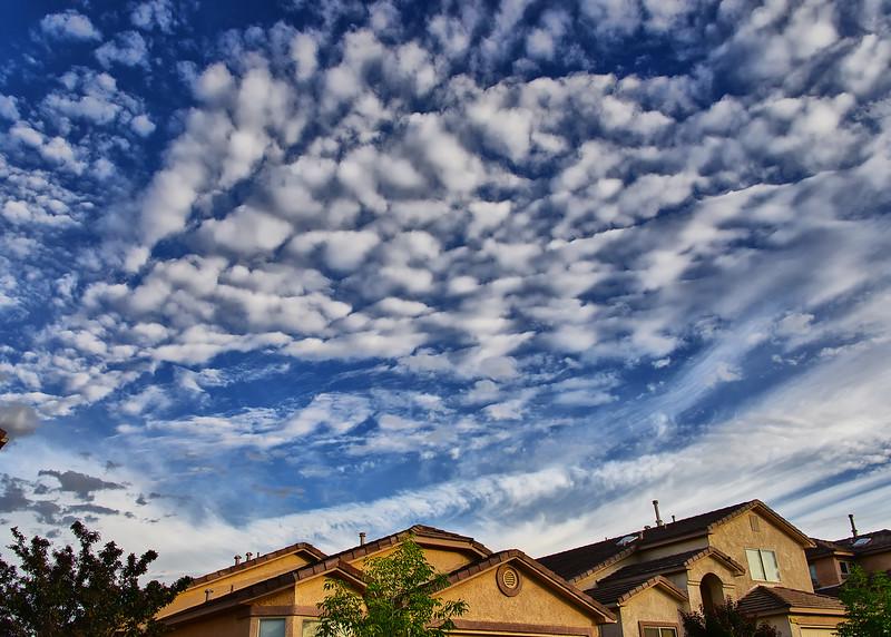 NEA_0085-7x5-Rio Rancho.jpg
