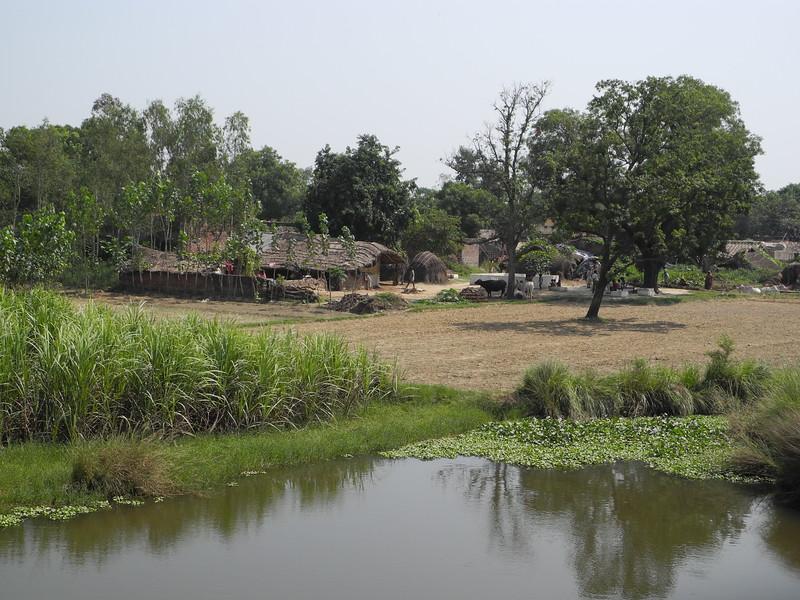 india2011 730.jpg