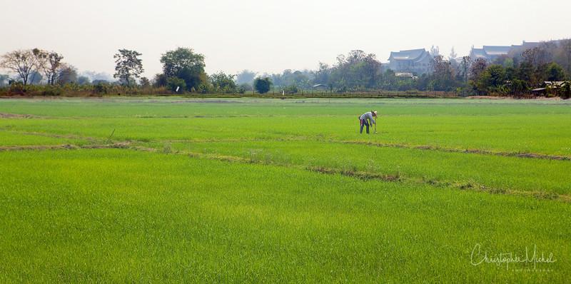 20100226_chiang_rai3_6086.jpg