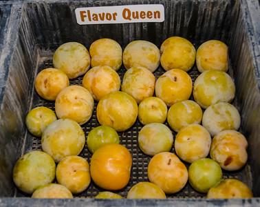Flavor Queen Plumcot (Prunus salicina x Prunus armeniaca)