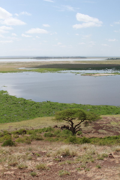 Kenya 2019 #2 1196.JPG