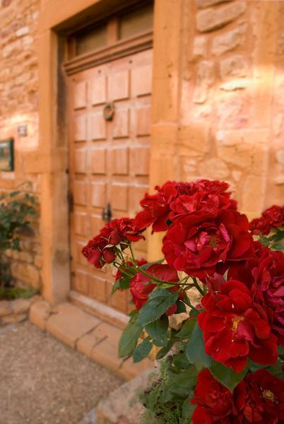 oingt roses.jpg